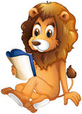 A lion reading a book Stock Photos