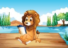 A lion reading a book seriously Stock Photos