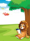 A lion reading under the tree Royalty Free Stock Photography