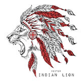 Lion in the red Indian roach. Indian feather headdress of eagle Stock Image