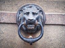 Lion Relief stockbilder