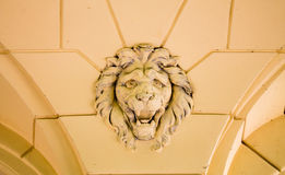 Lion Relief Stock Images