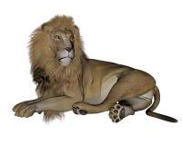Lion resting - 3D render Stock Image