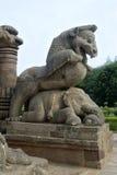Lion Riding over Elephant Royalty Free Stock Photo