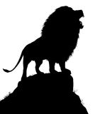 Lion roar. Editable vector silhouette of a roaring male lion standing on a rocky outcrop with lion as a separate object Royalty Free Stock Image