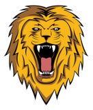Lion roar Stock Photo
