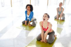 Lion roar. Three young females in simhasana posture rolling their eyes and sticking out tongues on mats Royalty Free Stock Photo