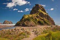 Lion Rock dichtbij Aucklad op Piha-strand, Nieuw Zeeland Stock Foto's
