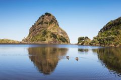 Lion Rock et plage de Piha Photo stock
