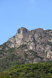 Lion Rock lejon gillar berget i Hong Kong Arkivfoto