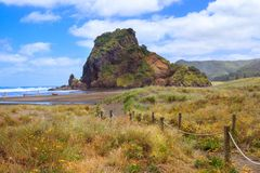 Lion Rock på den Piha stranden, västkusten nära Auckland, Nya Zeeland royaltyfri bild