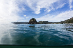 Lion Rock, Piha, Auckland, NZ Stock Photo