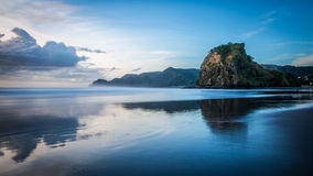 Lion Rock, Piha Beach  Stock Photos