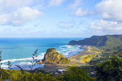 Lion Rock at Piha Beach Auckland New Zealand. Good Place for Picnic and Surfing Stock Image