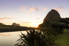 Lion Rock, Piha. Lion Rock and Piha beach on Auckland`s west coast are famous landmarks in NZ stock photo
