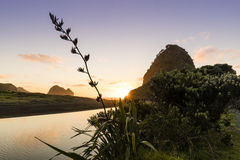 Lion Rock, Piha. Lion Rock and Piha beach on Auckland`s west coast are famous landmarks in NZ royalty free stock photography