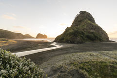 Lion Rock, Piha. Lion Rock and Piha beach on Auckland`s west coast are famous landmarks in NZ stock photography