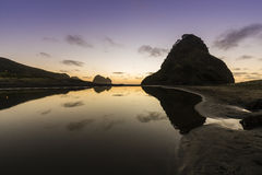 Lion Rock, Piha. Lion Rock and Piha beach on Auckland`s west coast are famous landmarks in NZ stock images