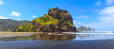 Lion Rock on Piha beach near Auckland, New Zealand stock images