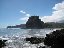Lion Rock, Piha Beach, New Zealand. View on the Lion Rock from the South Piha Beach royalty free stock images