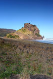 Lion Rock Piha Stock Photography