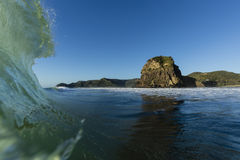 Lion Rock, Piha. Iconic Lion Rock shot from the surf, with a big wave breaking at Piha Beach, Auckland, New Zealand stock photos
