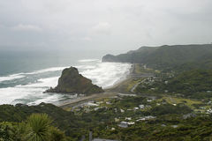 Lion Rock at Piha, New Zealand. Elevation view of the famous Lion Rock at Piha, NZ on the west coast of the north island Stock Image