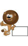 Lion With Round Mane - Leaning On Blank Board Royalty Free Stock Images