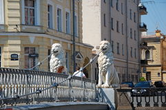 Lion's Bridge in Saint-Petersburg Royalty Free Stock Photography
