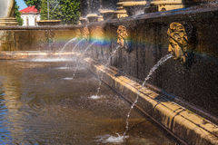 Lion's cascade fountain. The Lion's cascade in the Western Part of The Lower Park in the Peterhof State Museum Preserve Royalty Free Stock Photos