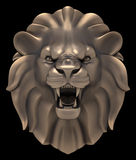 Lion`s Head Royalty Free Stock Photography