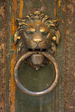 Lion's head door knocker Stock Image