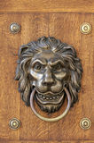 Lion's head, door knocker. Royalty Free Stock Images