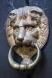Lion`s Head Door Knocker with Cobwebs royalty free stock photo
