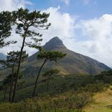 Lion's Head peak, Stock Image