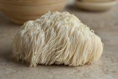 Lion's mane mushroom Royalty Free Stock Photo