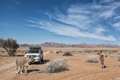 Lion safari. Woman in namib desert meets a lioness beside her 4x4 safari car, voncept for off road adventure and africa tourism, Namibia, Africa stock photo