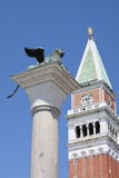 The lion of San Marco. Campanile and Lion in San Marco's square, Venice, Italy Stock Images