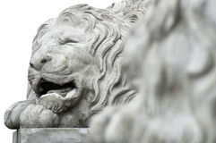 Lion Sculpture_02 Stock Image