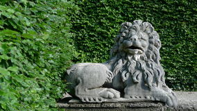 Lion sculpture. Stone lion with the gree leaves background Royalty Free Stock Image