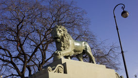 Lion Sculpture Fotografia de Stock