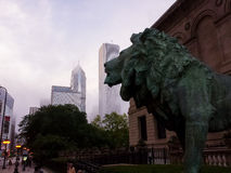 Lion sculpture at the Art Institute of Chicago Stock Photos