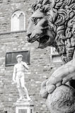 Lion sculpture and david of Michelangelo. In piazza della Signoria Florence, Tuscany - Italy Stock Photos
