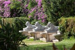 Lion sculpture in Garden of Villa Borghese. Royalty Free Stock Image