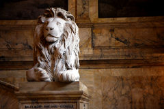 Lion Sculpture In A Public Library Royalty Free Stock Photos