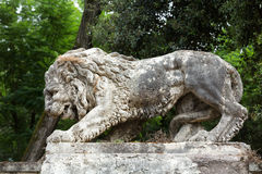 Free Lion Sculpture In Garden Of Villa Borghese. Rome Stock Images - 65046764