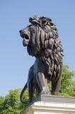 Lion Sculpture Maiwand krigminnesmärke som läser Royaltyfri Fotografi