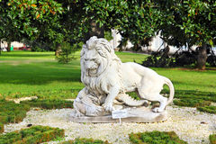 Lion sculpture near dolmabahce palace in istanbul Royalty Free Stock Images