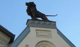 Lion sculpture on the roof royalty free stock photo