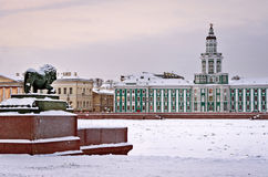 The lion sculpture  in Saint Petersburg, Russia Royalty Free Stock Image